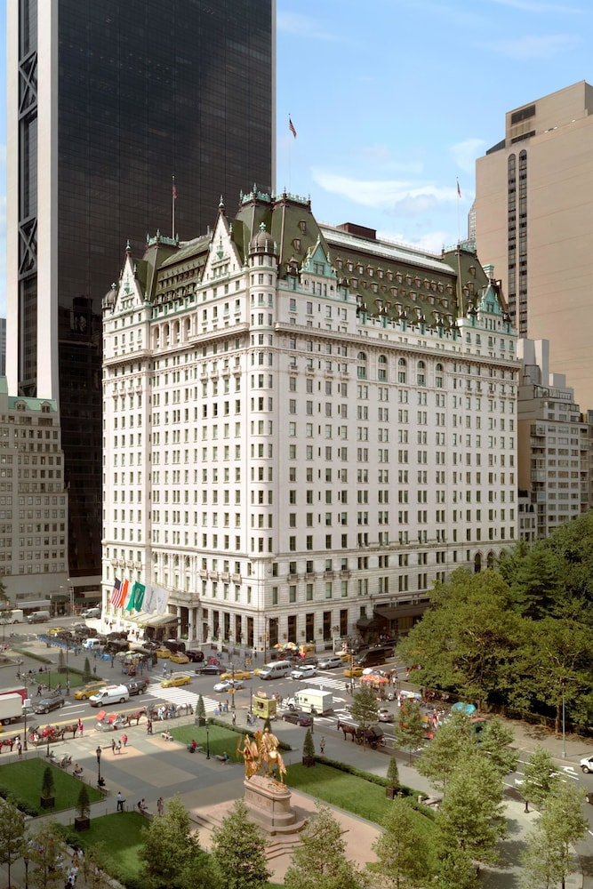 The Plaza Hotel in New York | Hotel Rates & Reviews on Orbitz