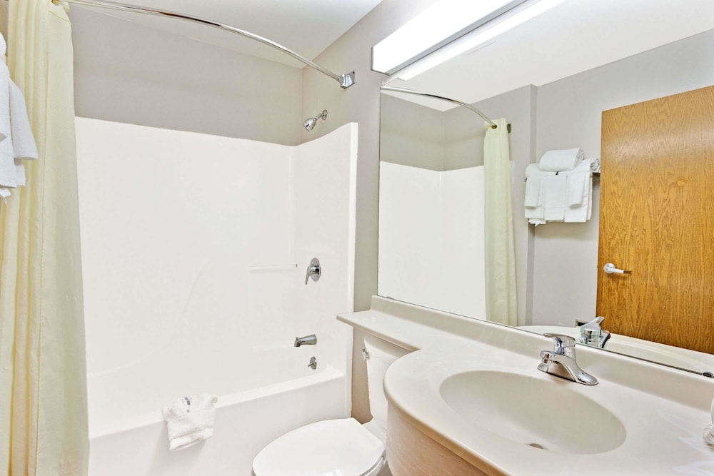 Bathroom, Microtel Inn & Suites by Wyndham Roseville/Detroit Area