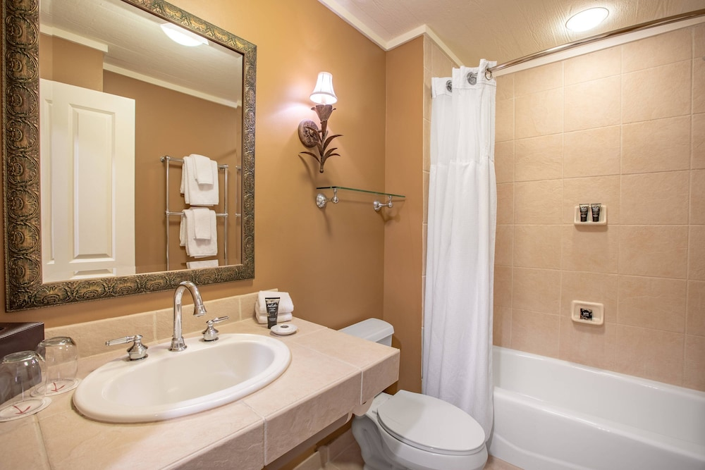 Bathroom, Bohemian Hotel Celebration, Autograph Collection