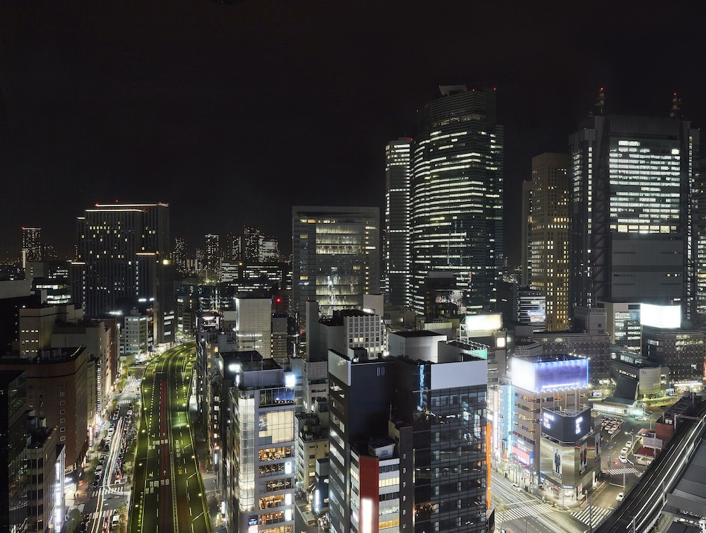 View from Property, Daiichi Hotel Tokyo