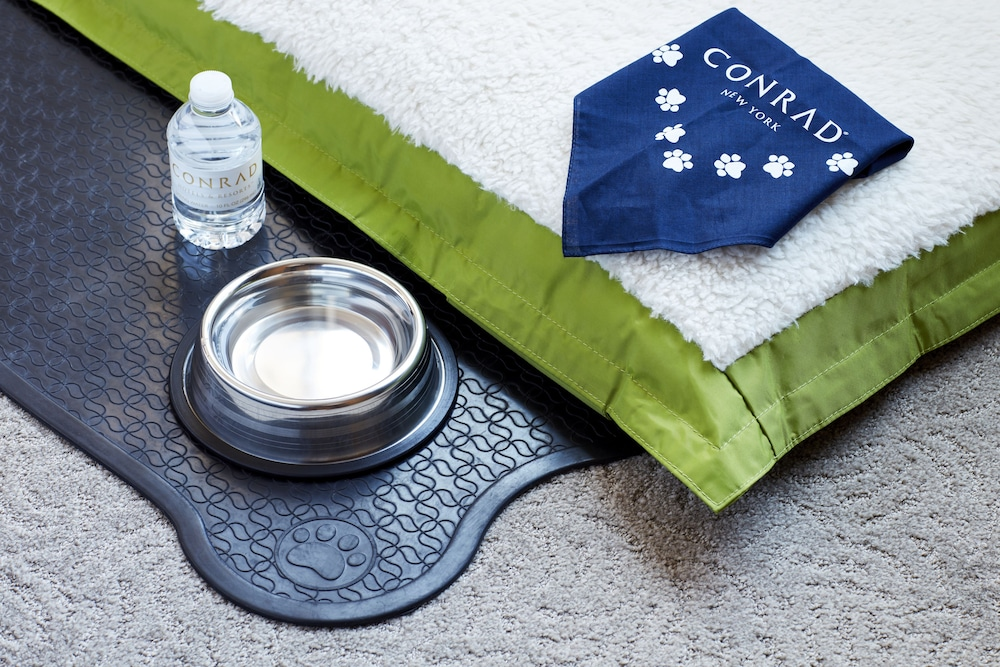 Pet-Friendly, Conrad New York Downtown