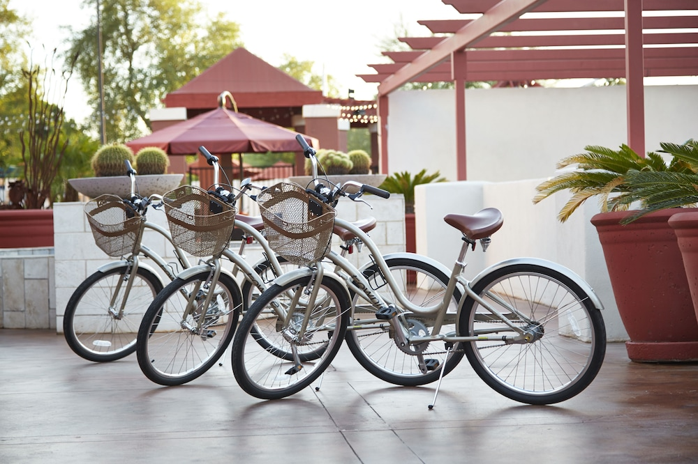 Bicycling, Hilton Garden Inn Scottsdale Old Town