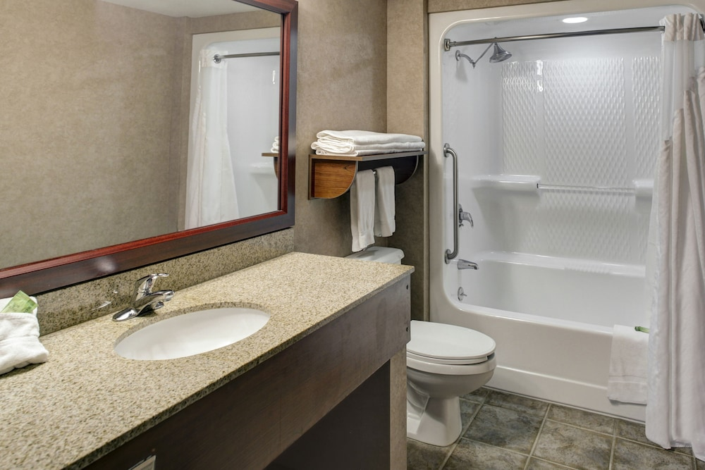 Bathroom, Holiday Inn Express Hotel & Suites Deadwood-Gold Dust Casino, an IHG Hotel