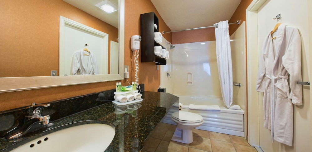 Bathroom, Holiday Inn Express Hotel & Suites San Jose-Morgan Hill, an IHG Hotel