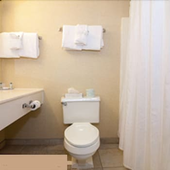 Bathroom, Chateau Resort & Conference Center