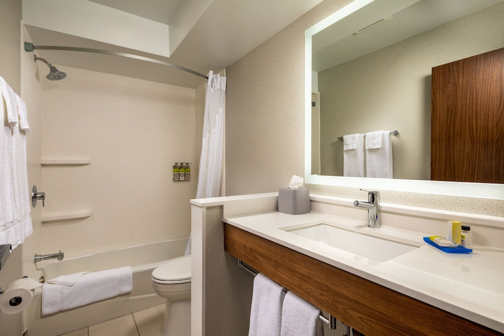 Bathroom, Holiday Inn Express & Suites Chatsworth, an IHG Hotel