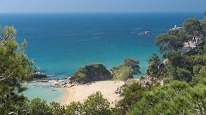 Ubicación cercana a la playa y bar en la playa