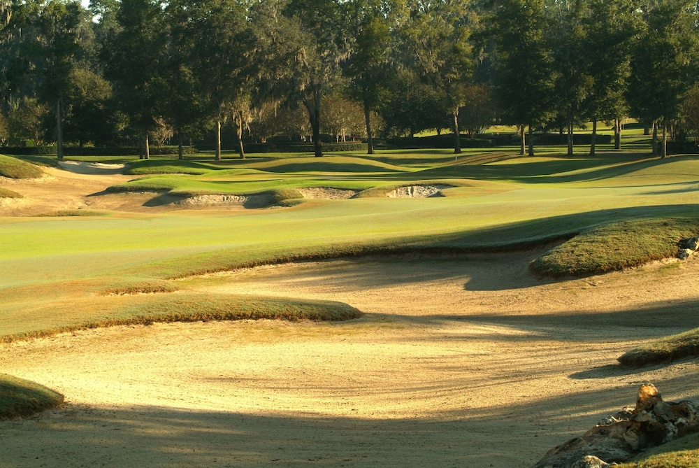 Golf, Best Western Ocala Park Centre