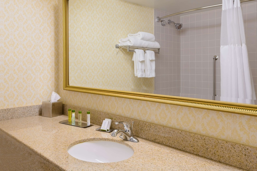 Bathroom, Doubletree by Hilton Richmond-Midlothian