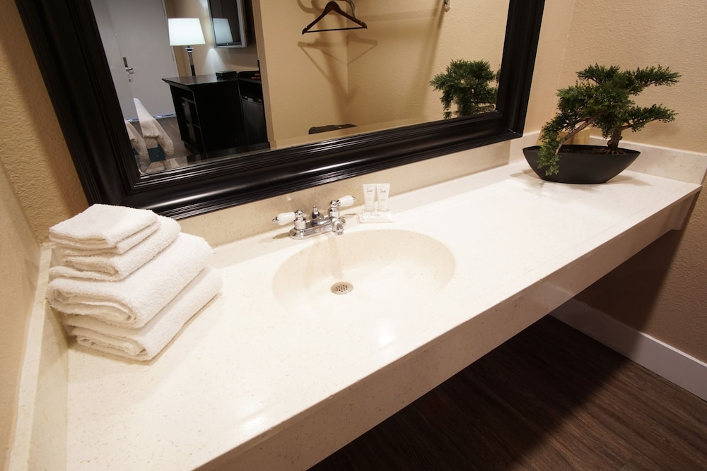 Bathroom Sink, The Dixie Orange County