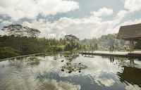 Four Seasons Resort Bali at Sayan (32 of 103)