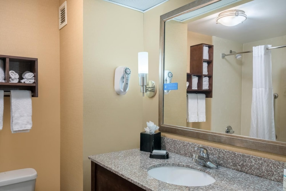 Bathroom, Hamilton Inn Bessemer