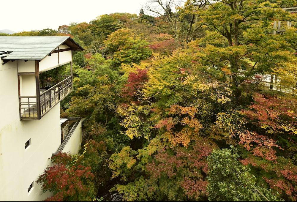 強羅花壇 / 神奈川県 箱根 96