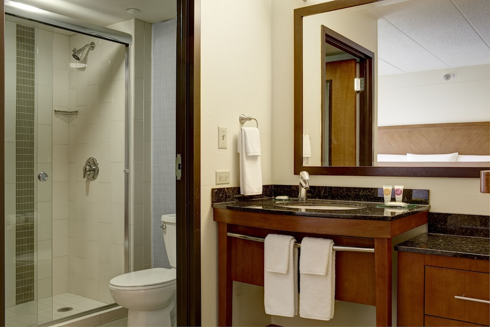 Bathroom, Hyatt Place Atlanta Airport-South