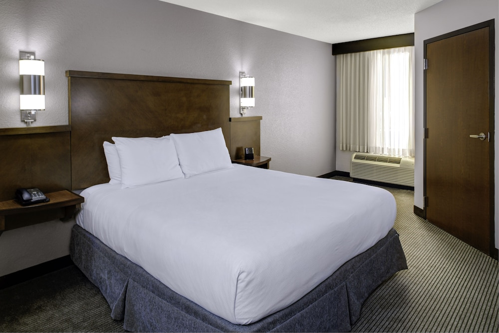 Room, Atlanta Perimeter Center Hotel & Suites