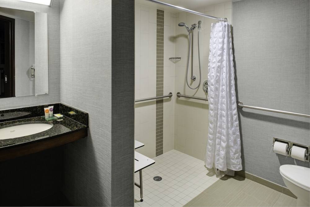 Bathroom, Atlanta Perimeter Center Hotel & Suites