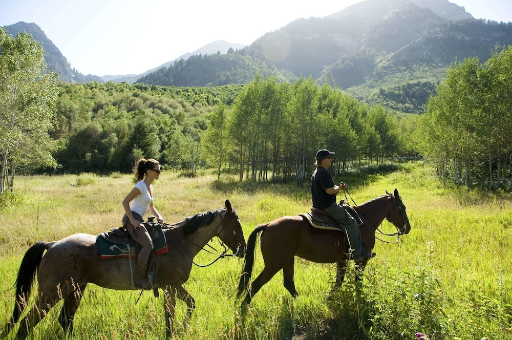 Horse Riding, Sundance Mountain Resort