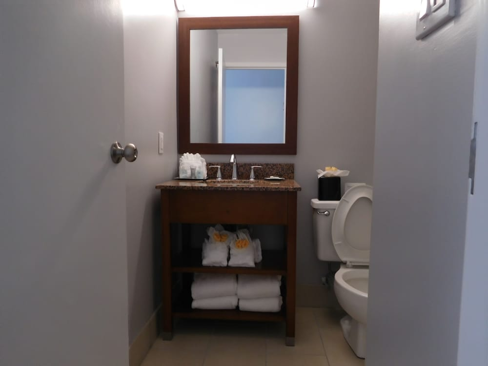 Bathroom, Wyndham Garden Greensboro