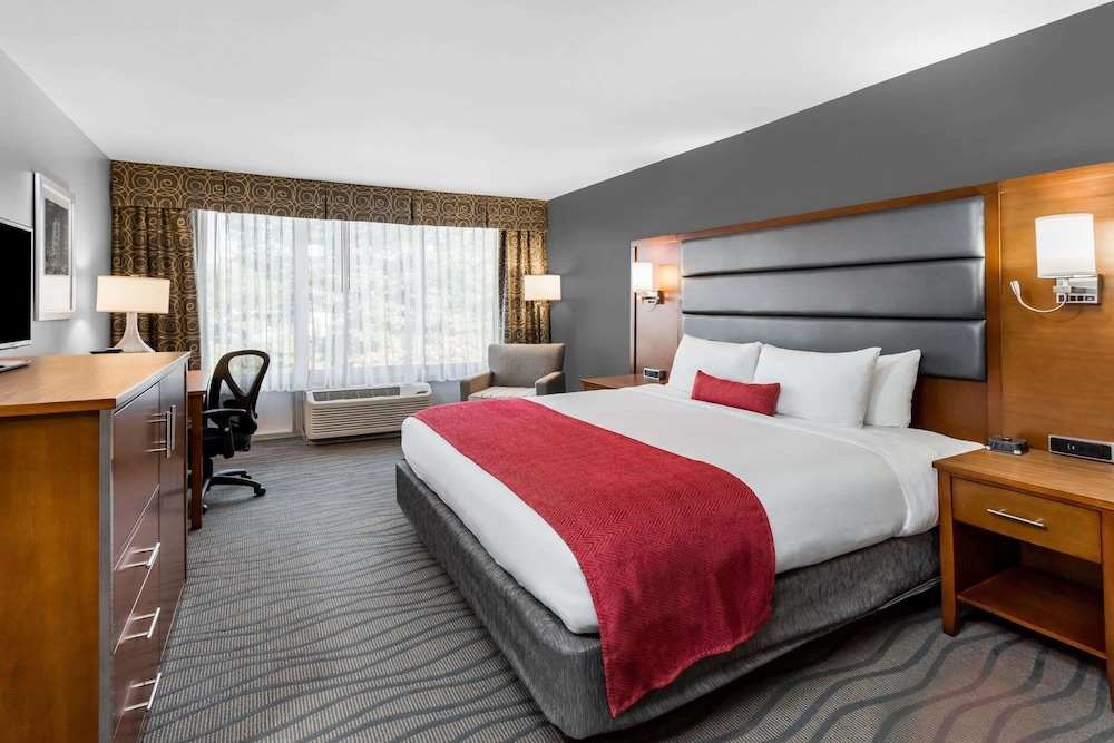 Room, Wyndham Garden Greensboro