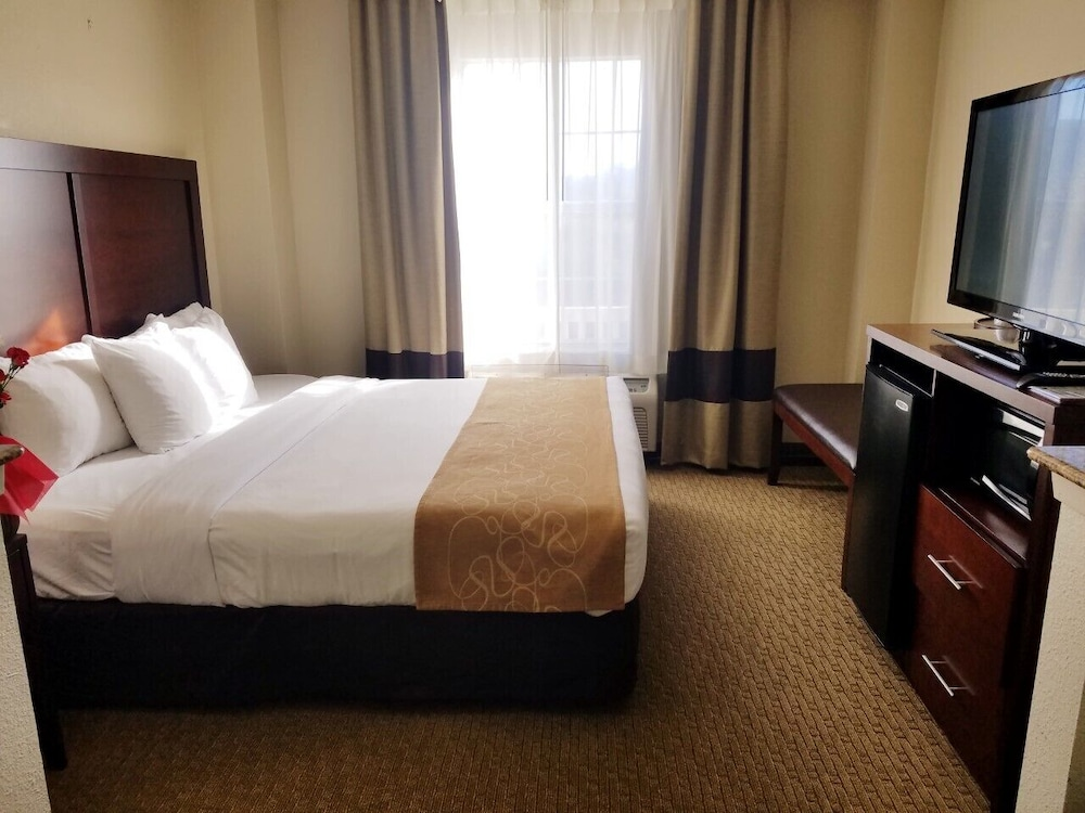 Room, Comfort Suites Las Colinas Center