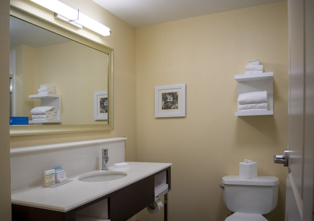 Bathroom, Hampton Inn St. Louis/Chesterfield