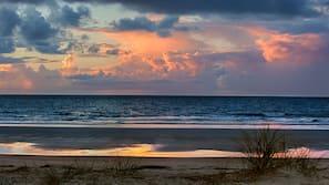 海灘、免費海灘接駁車、躺椅、太陽傘