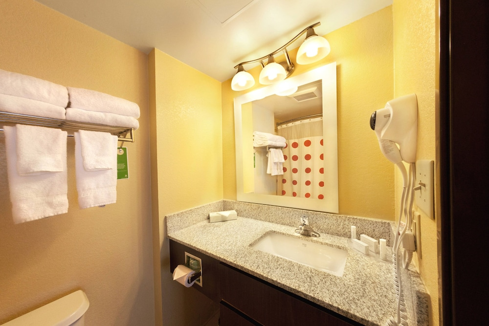 Bathroom, TownePlace Suites by Marriott Wilmington Newark/Christiana