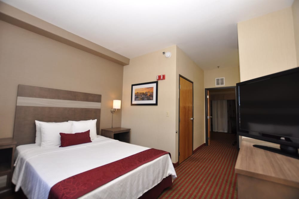 Room, Best Western Plus Executive Suites