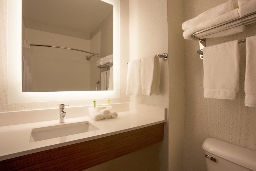 Bathroom, Holiday Inn Express & Suites Davis - University Area