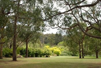 142 Arthurs Seat Road, Red Hill, Victoria 3937, Australia.