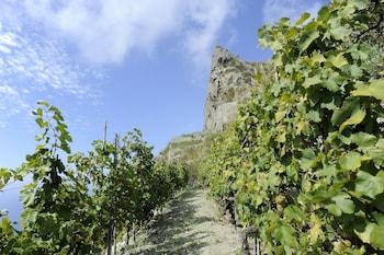 Via Mezzatorre, 23, 80075 Forio d'Ischia NA, Italy.