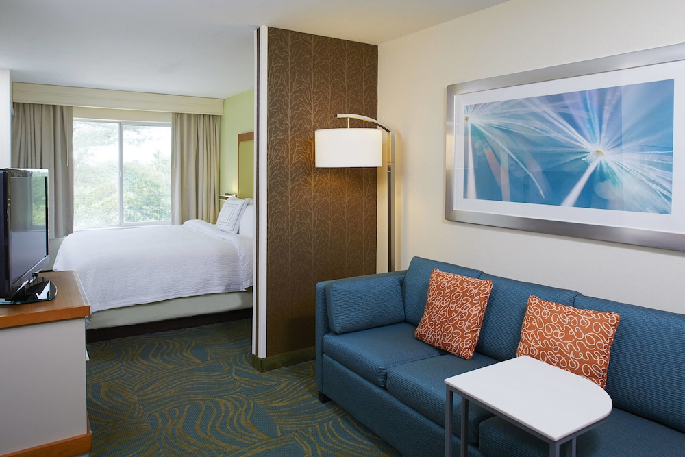 Room, Springhill Suites By Marriott Atlanta Six Flags