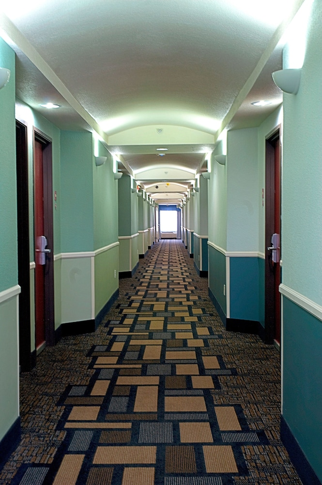 Hallway, Super 8 by Wyndham Irving/DFW Apt/North