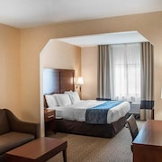 Comfort Inn And Suites Hamburg