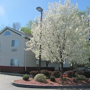Dollingers Inn & Suites
