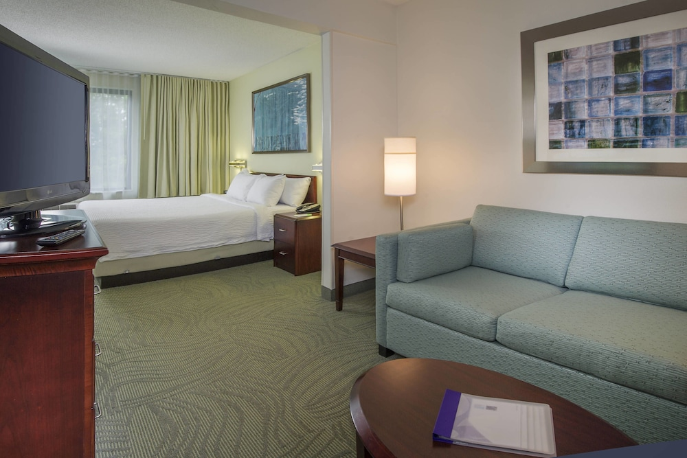 Room, SpringHill Suites by Marriott Raleigh-Durham Airport/Research Triangle Park