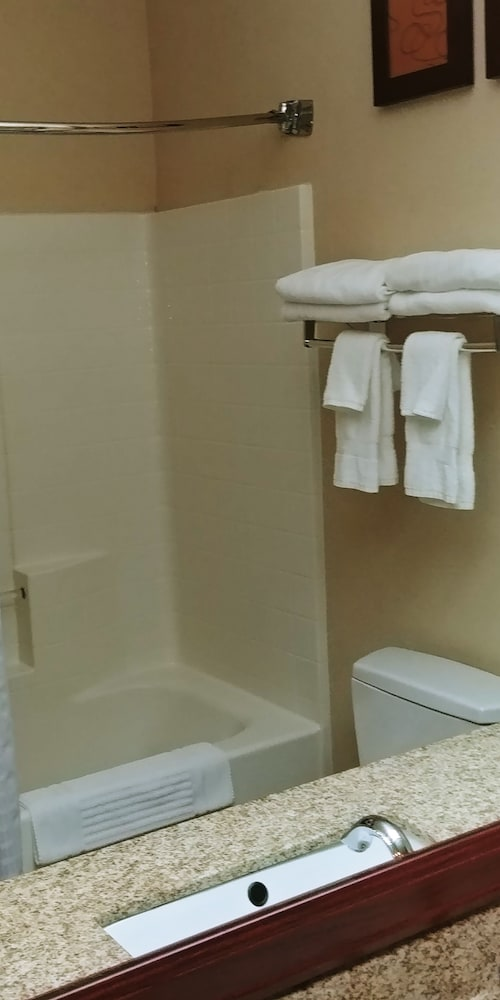 Bathroom, Comfort Suites Southwest
