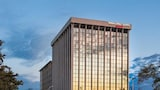 SpringHill Suites Chicago O'Hare by Marriott - Chicago Hotels