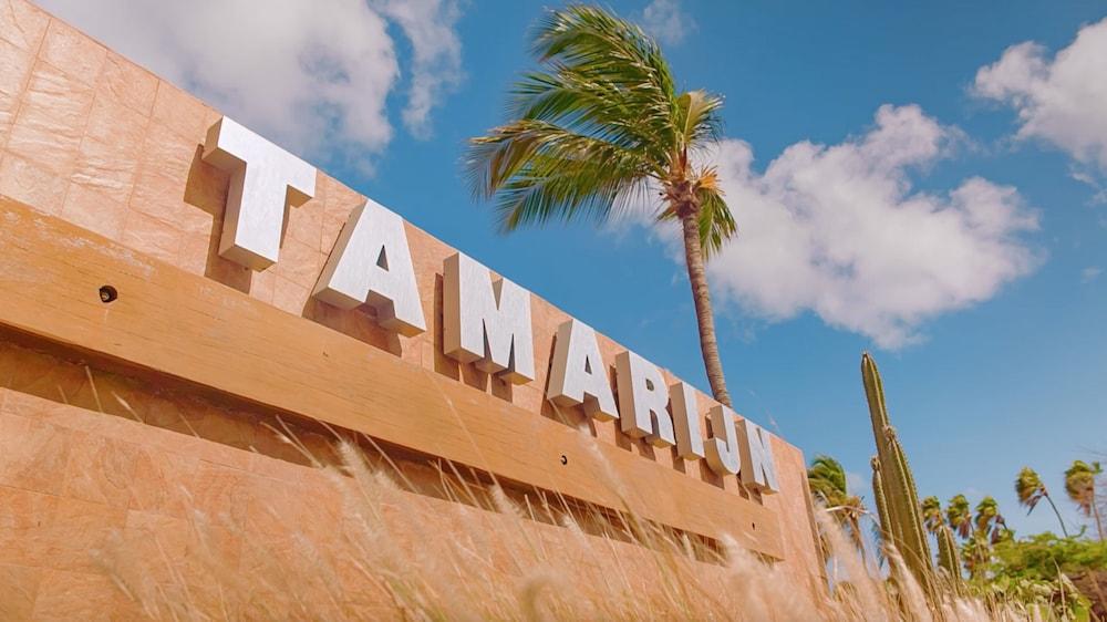 Tamarijn Aruba All Inclusive 2019 Room Prices Deals Reviews