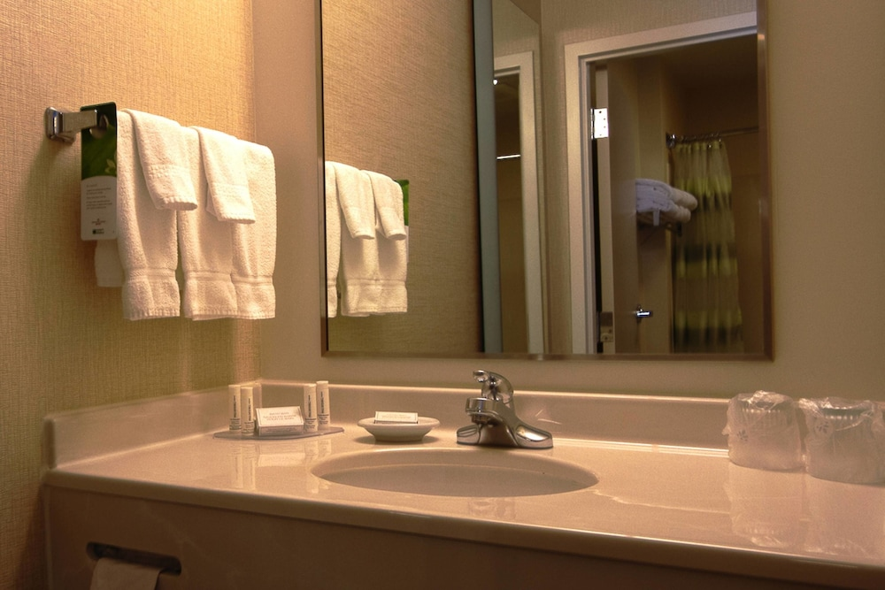 Bathroom, SpringHill Suites by Marriott Hershey Near the Park