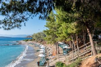 Agios Nikolaos 72100, Crete, Greece.