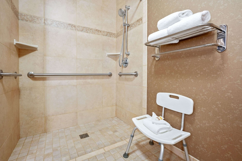 Bathroom Shower, La Quinta Inn & Suites by Wyndham Boise Towne Square