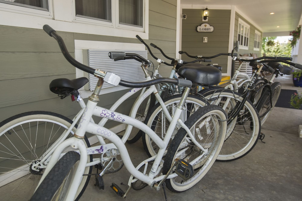 Bicycling, Ivy Court Inn & Suites