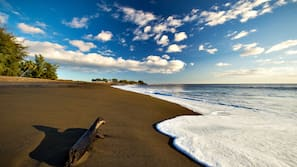 On the beach, black sand, fishing