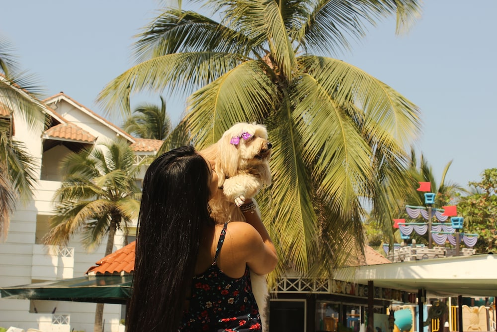 Pet-Friendly, Las Americas Casa de Playa