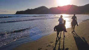 On the beach, black sand, free beach shuttle, sun loungers