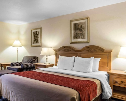 Comfort Inn & Suites Sequoia/Kings Canyon