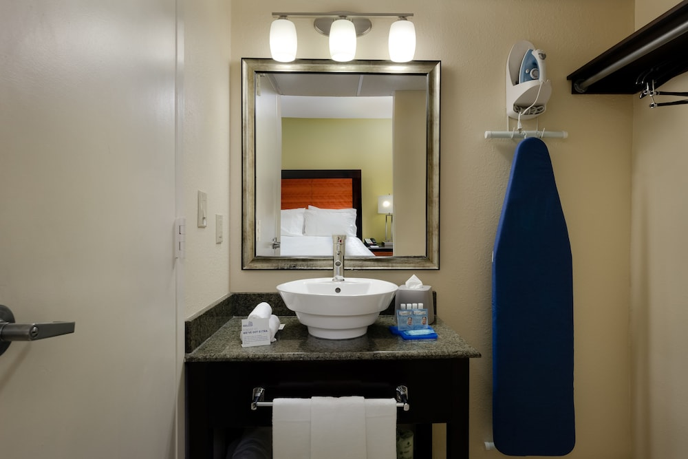 Bathroom, Holiday Inn Express and Suites Atlanta Downtown