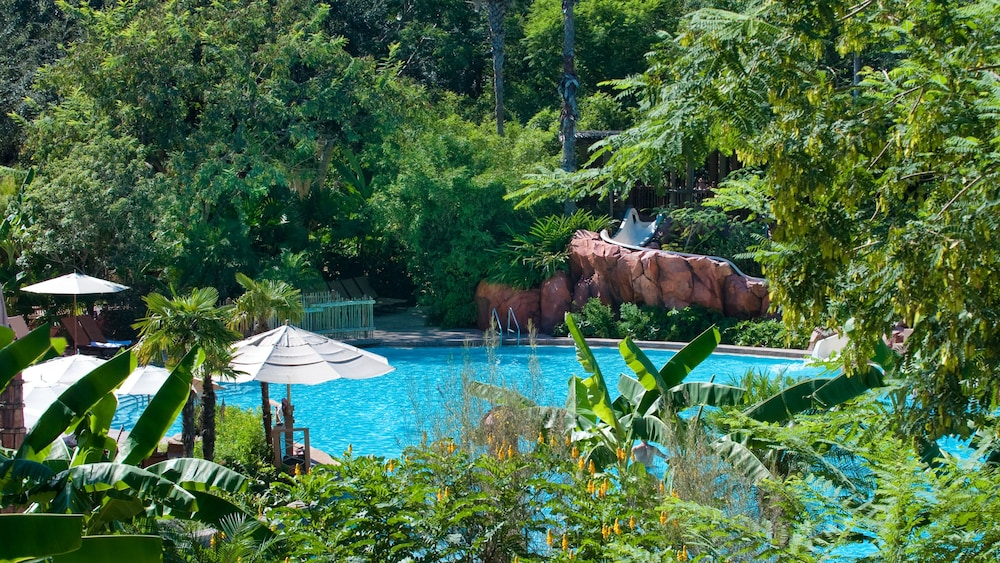 Pool, Disney's Animal Kingdom Lodge
