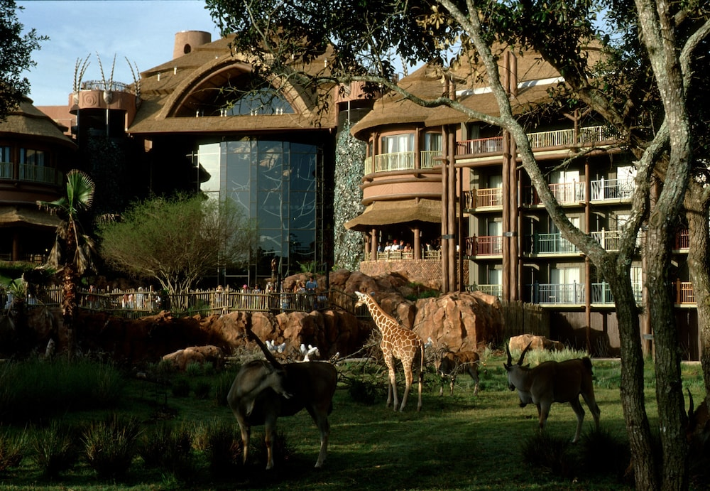 Courtyard View, Disney's Animal Kingdom Lodge